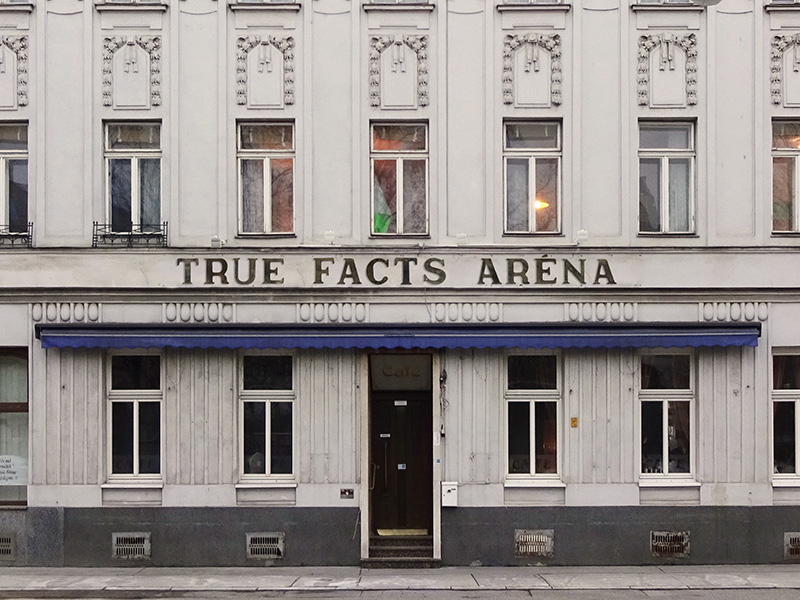 true facts arena hotel